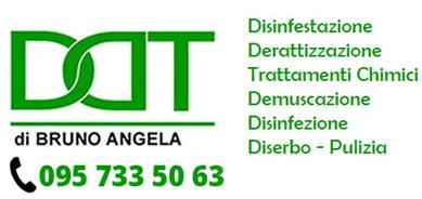DDT Service Srl